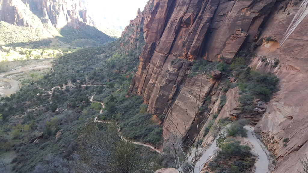 Zion National Park and Almost Dying While Hiking Angel's Landing