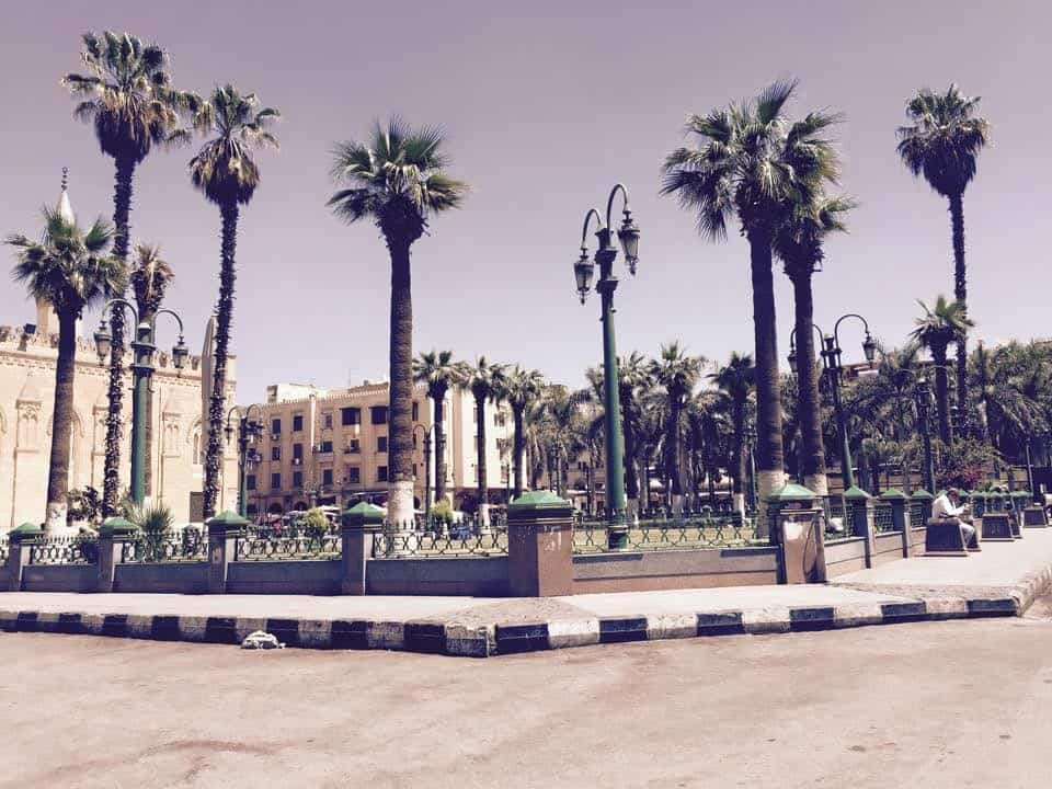Scenery are one of the Pictures That Will Make You Want To Visit Cairo