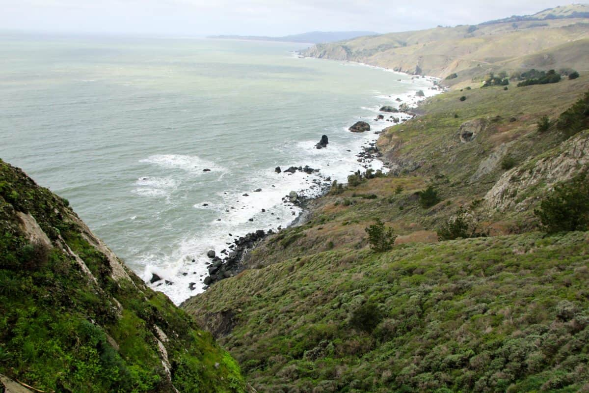 Muir Lookout - Tips for Visiting Muir Woods National Monument