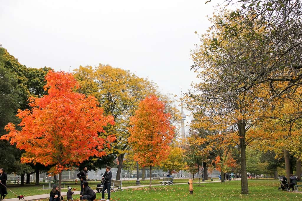 The Very Best Places To Experience the Toronto Fall Colours