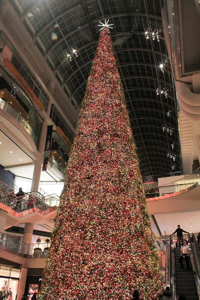 Christmas In Toronto Canada.How To Celebrate Christmas In Toronto My Toronto My World