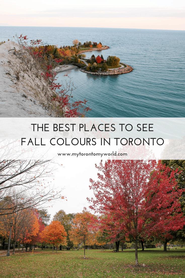 Toronto Fall Colours