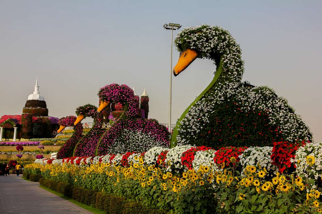 Giant floral display at Miracle Garden