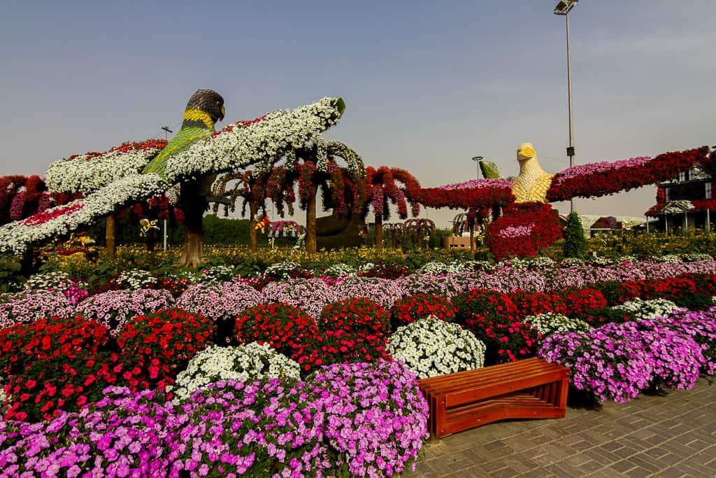 Flower installation of birds at Dubai Miracle Garden