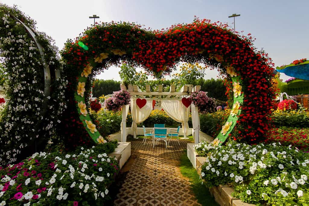 Floral display where you can eat a packed lunch at Dubai Miracle Garden