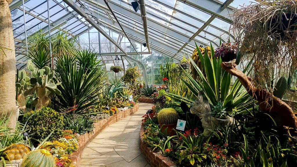 Toronto Conservatories: Allan Gardens, Cloud Gardens and Centennial Park Conservatory