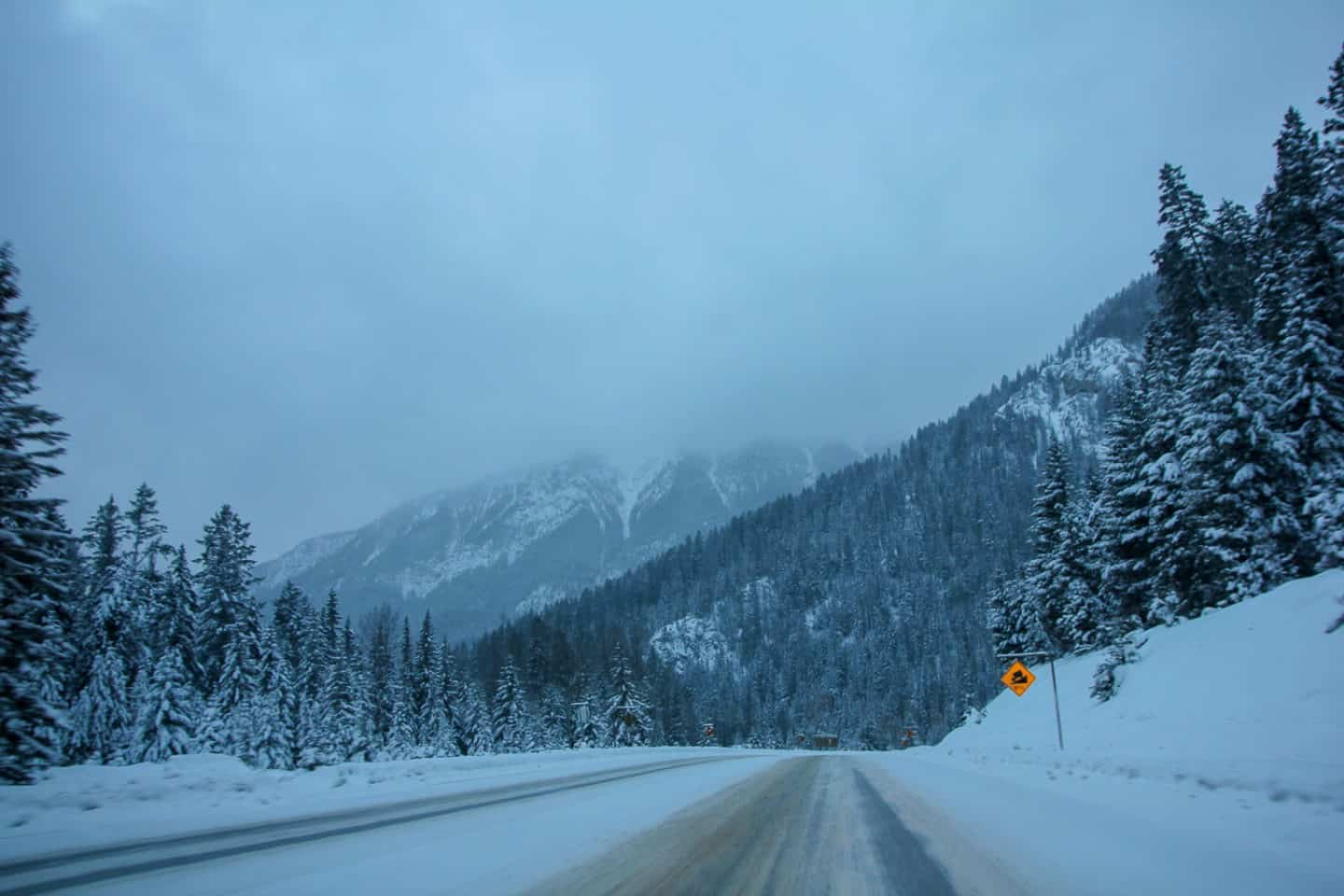 Road tripping in all seasons is one of the major reasons to visit Canada