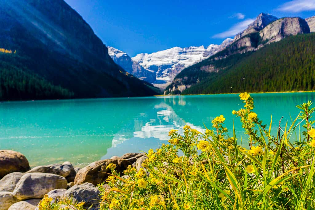 Lake Louise in Banff National Park in Alberta is one of the most beautiful places in Canada