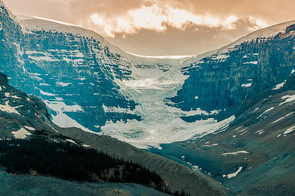 Wilcox Trail in the Columbia Icefields in Jasper National Park is one of the most beautiful places in Canada