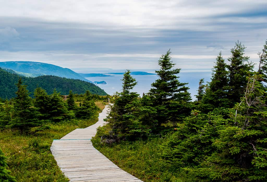 The Skyline Trail in Cape Breton in Nova Scotia is one of the most beautiful places in Canada