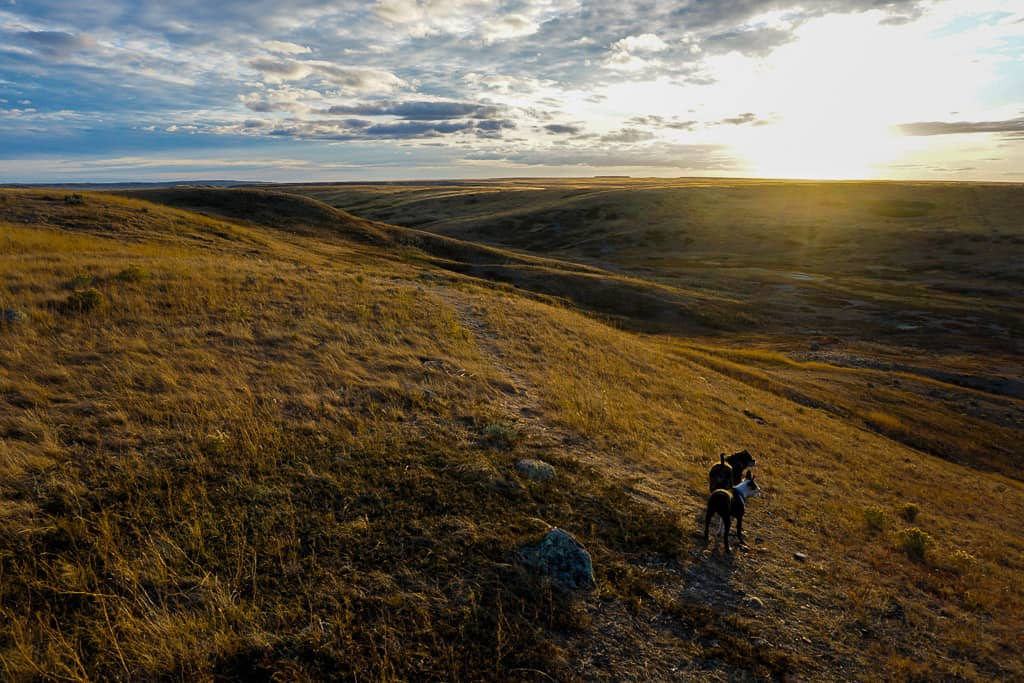 Grasslands National Park is one of the most beautiful places in Canada