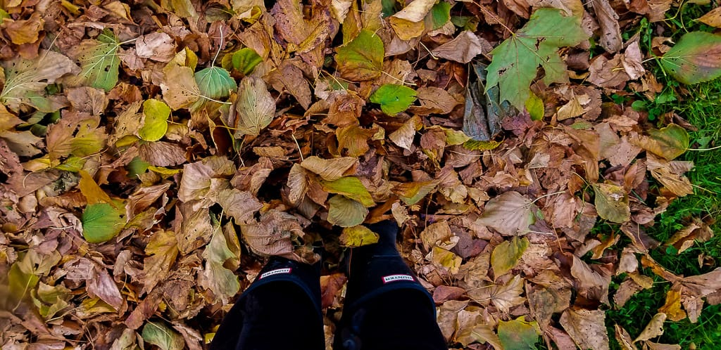 Spending time outdoors is one of the most important things to do in Ontario this fall