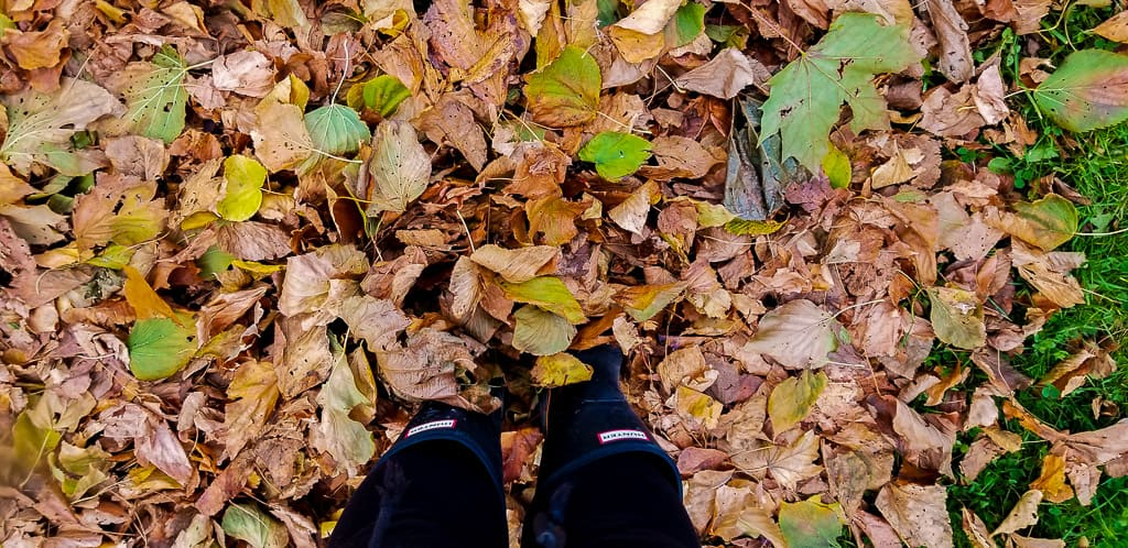 Getting outside is one of the things to do in Toronto this fall