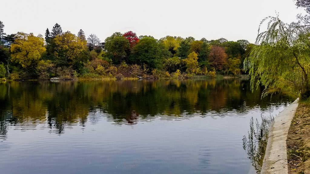 Taking in the fall colours is one of the best things to do in Toronto this fall