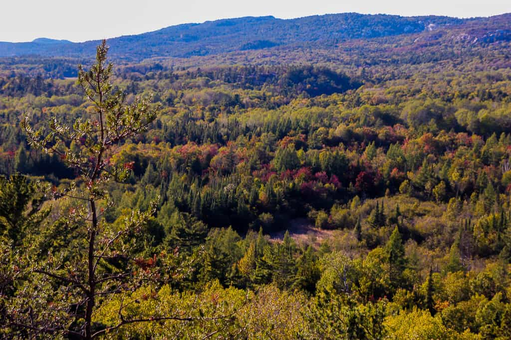 Visiting a provincial park is one of the things to do in Ontario this fall