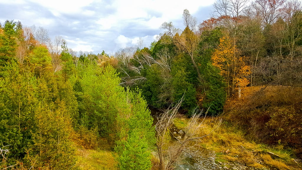 Visiting Rouge Urban National Park is one of the things to do in Toronto this fall