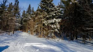 Getting outside is one of the things to do in Ontario this winter