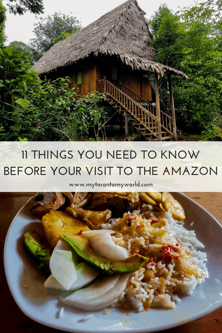 A comprehensive list of things you need to know before visiting the Amazon Rain Forest in Peru