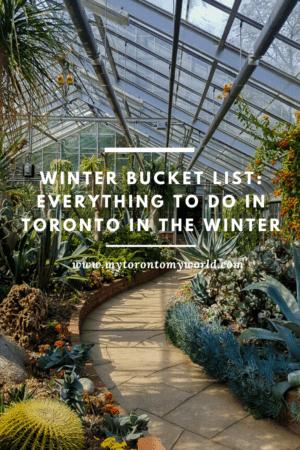 Toronto Winter Bucket List: 16 Things To Do In Toronto In Winter