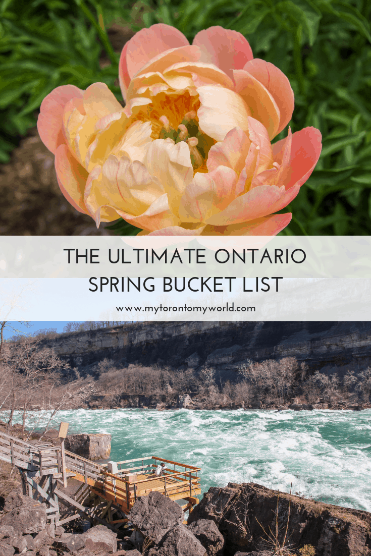 The Ultimate Ontario Spring Bucket List with all the things to do in Ontario in spring! #ontario #canada