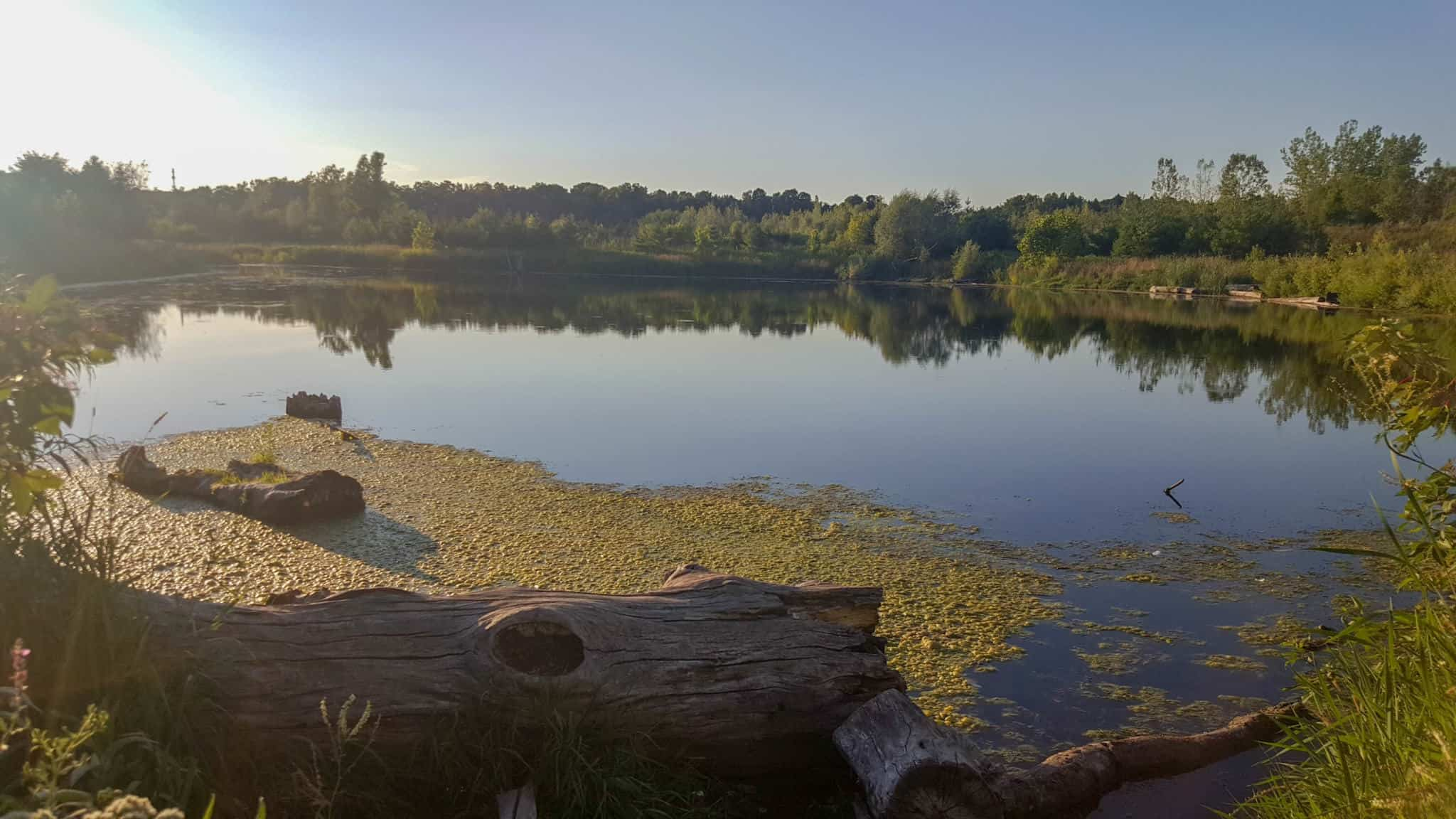 Exploring Rouge National Urban Park is one of the free things to do in Toronto