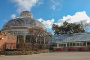 Allan Gardens is one of the things to do during one day in Toronto