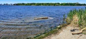 Darlington Provincial Park is one of the Provincial Parks Near Toronto