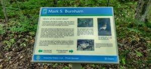 Mark S. Burnham Provincial Park is one of the provincial parks near Toronto